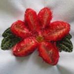 Velvet Flowers