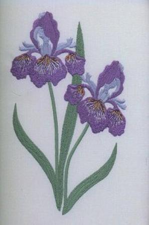 Amazon.com: Viking 1+/Rose/Iris Husqvarna Embroidery Card FLORAL